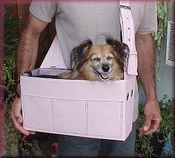 dog_carrier